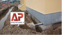 Chống mối cho nhà xây mới